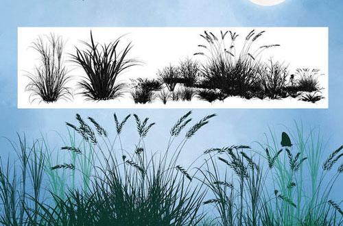Pinceles de hierba
