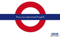 now-you-understand-english