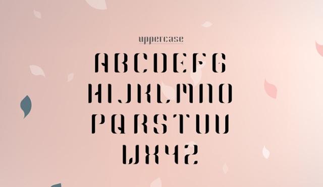 2-free-font-1
